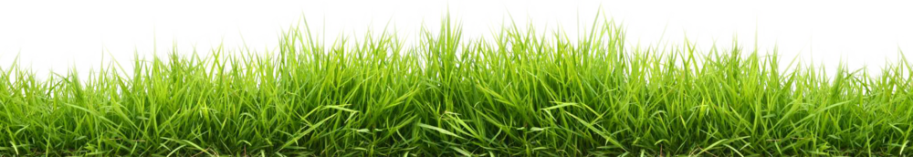 widescreen-grass